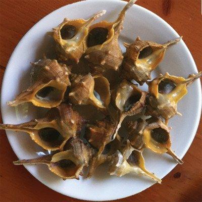 marisco cañaíllas